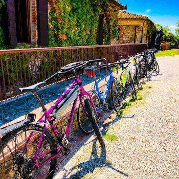 12 biking